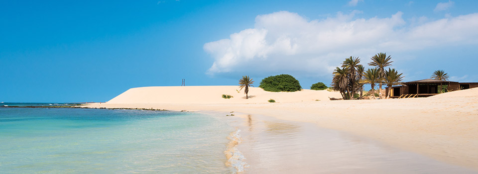 Flights from Brussels to Boa Vista  from 272 EUR