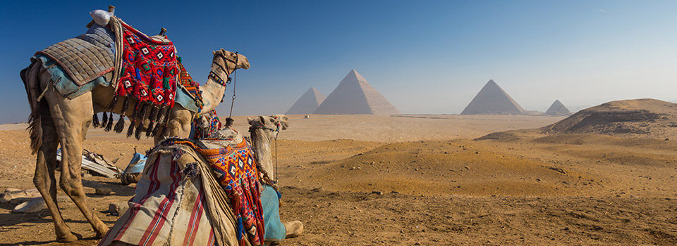 Flights to Egypt from 335 EUR