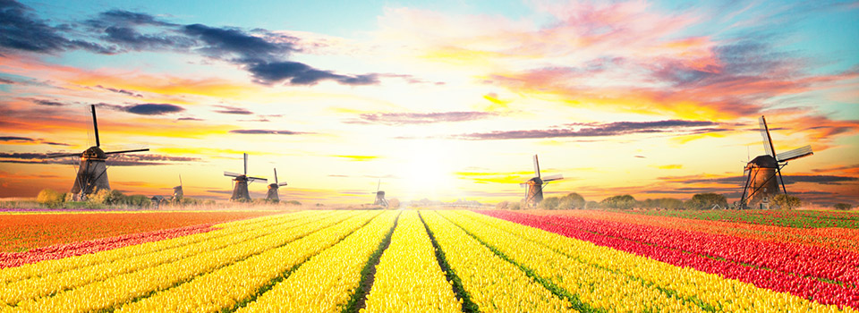 Flights from Spain to Netherlands from 73 EUR